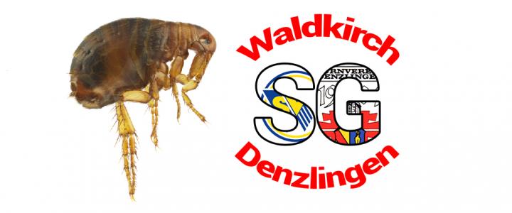 SGWD Flohmarkt / Kleinanzeige